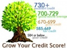 CREDIT+MANAGEMENT+COURSES